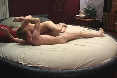 messy cocks Wrestle And bunch-sex Free homo Porn