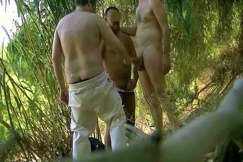 homosexual Cruising In The Forest And We Love It