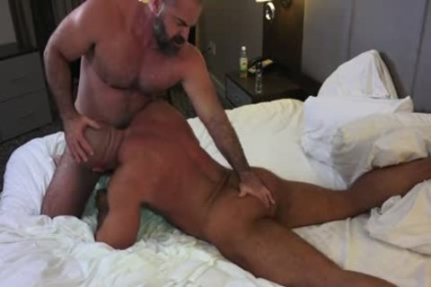 Muscle Daddy Bears gay Sex