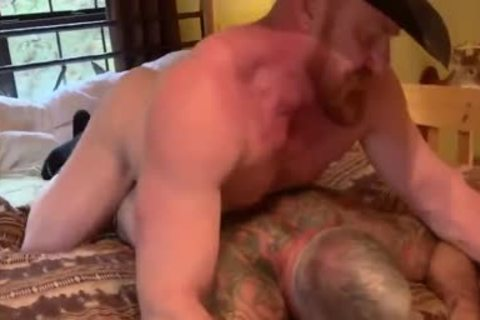 Ginger Daady And Silver Daddy pound Very wild